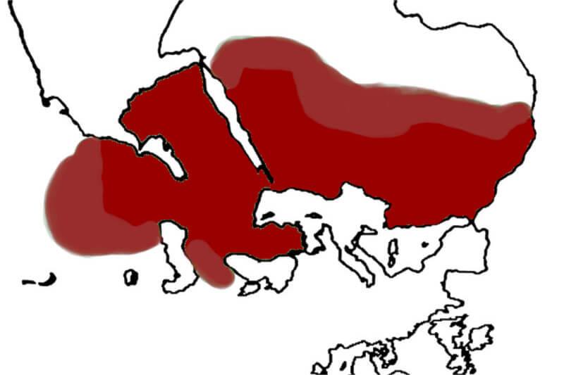 Karte Naher Osten auf dem Kopf